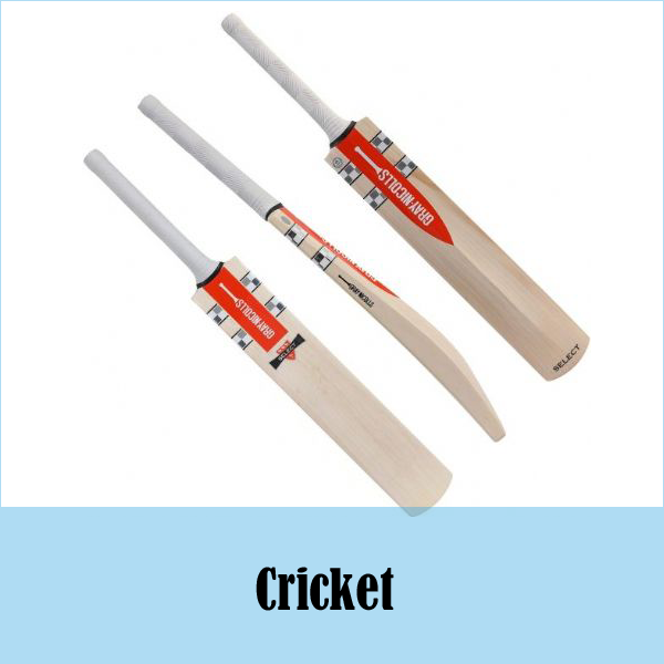 Paynter Cricket Shoes White